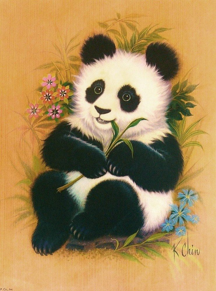 Belles Images De K Chin